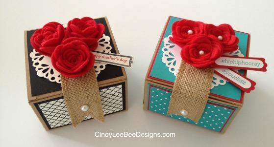 SU Spiral Flower Boxes