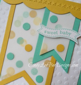 SU Itty Bitty Banner for Baby Close up !!!