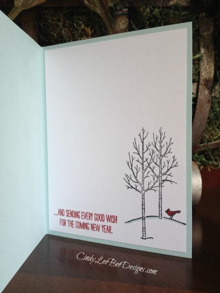 SU White Christmas Inside Shaker Card