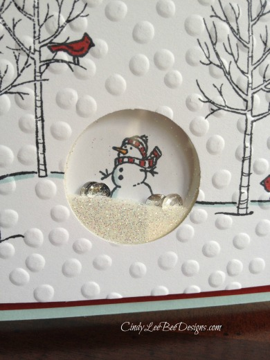 SU White Christmas Shaker Card Close up