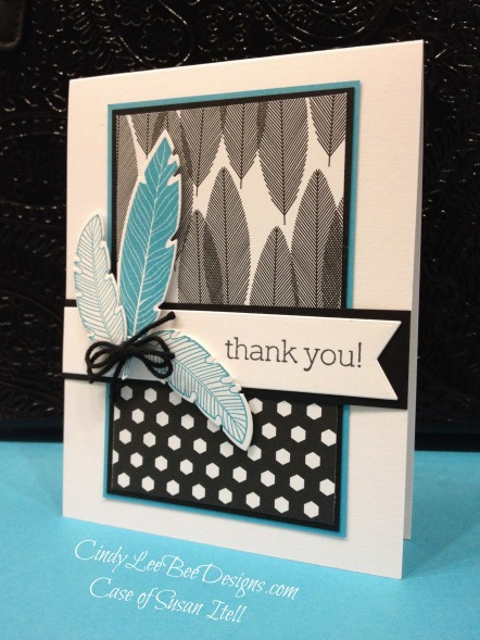 SU Four Feathers with Back to Black DSP Turquoise