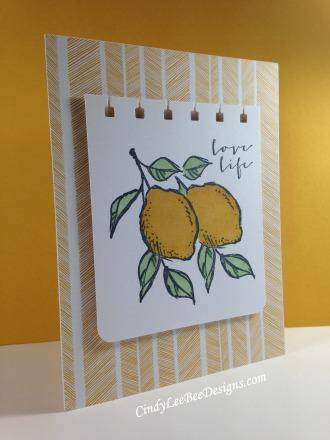 SU A Happy Life masked lemons