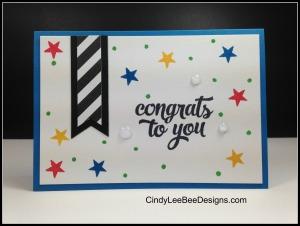 SU Bountiful Border Tin of Cards Congrats Notecard
