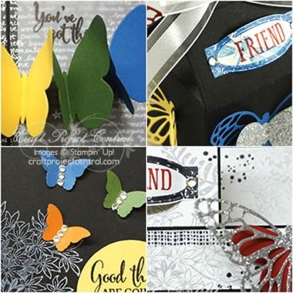 Butterflies of Encouragement SP