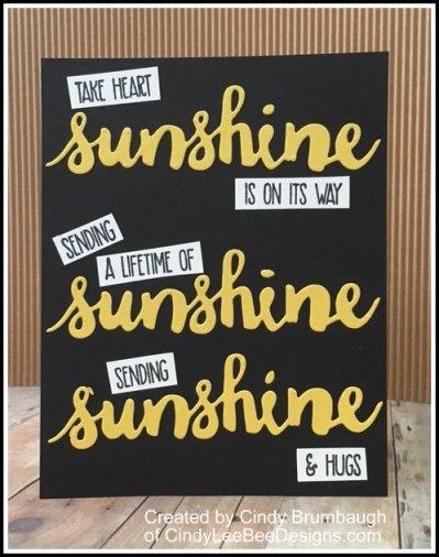 SU Sunshine Wishes examples