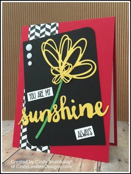 SU Sunshine Wishes You are my sunshine