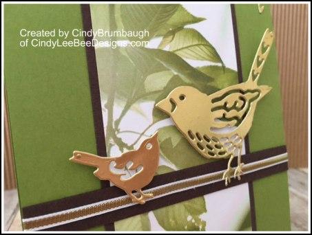 SU Best Birds Gold Foil Close up