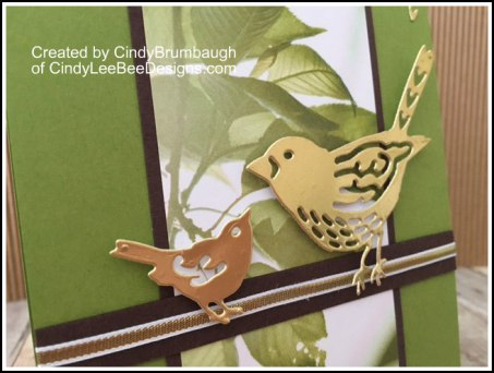 SU Best Birds Gold Foil Close up