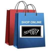 shop online bags