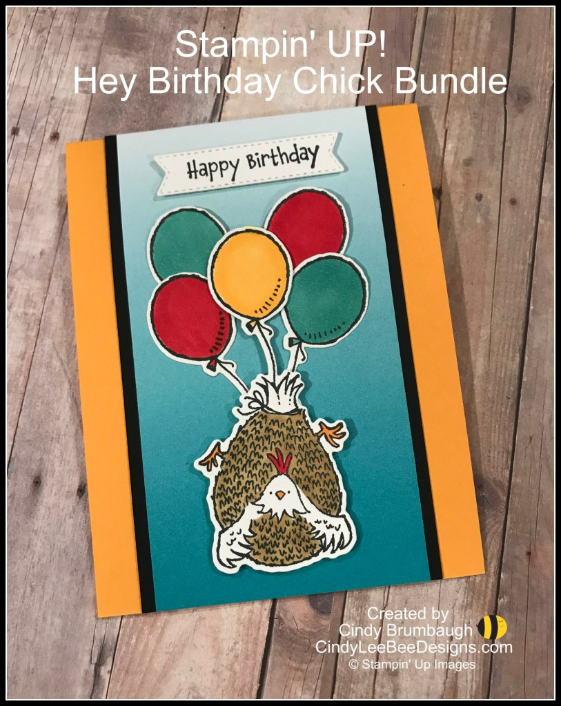 This image has an empty alt attribute; its file name is su-hey-birthday-chick-bundle-with-balloons.jpg